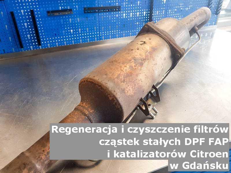 Wypłukany filtr cząstek stałych GPF marki Citroen, w warsztacie, w Gdańsku.