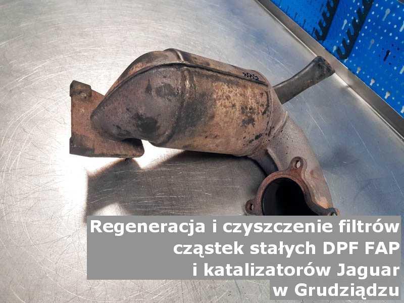 Myty katalizator utleniający marki Jaguar, w pracowni laboratoryjnej, w Grudziądzu.