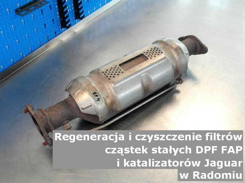 Regenerowany katalizator marki Jaguar, w pracowni laboratoryjnej, w Radomiu.