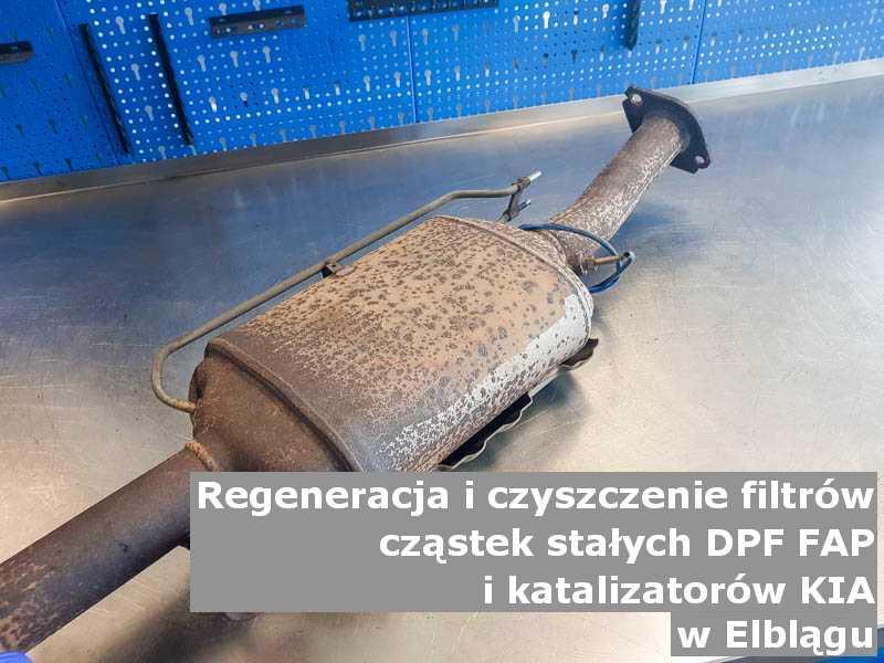 Płukany katalizator marki Kia, w warsztatowym laboratorium, w Elblągu.