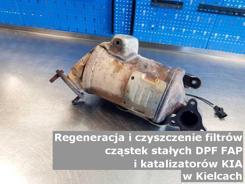 Myty filtr cząstek stałych DPF marki Kia, w laboratorium, w Kielcach.