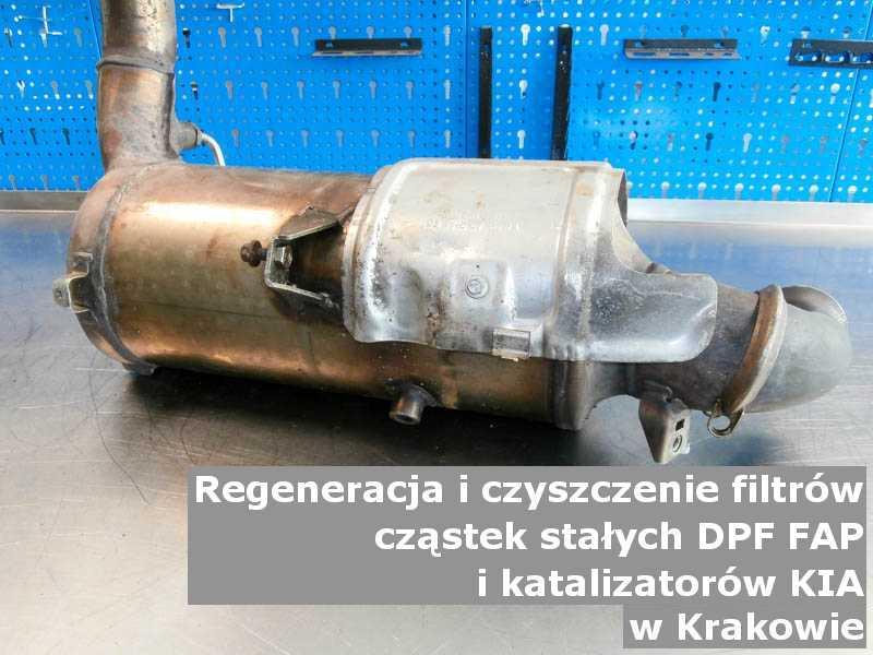 Oczyszczony filtr cząstek stałych DPF/FAP marki Kia, w pracowni regeneracji, w Krakowie.