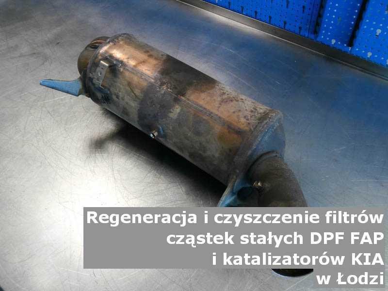Wypłukany katalizator utleniający marki Kia, w pracowni laboratoryjnej, w Łodzi.