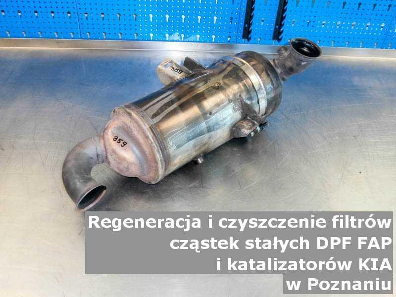 Wyczyszczony filtr FAP marki Kia, w warsztatowym laboratorium, w Poznaniu.