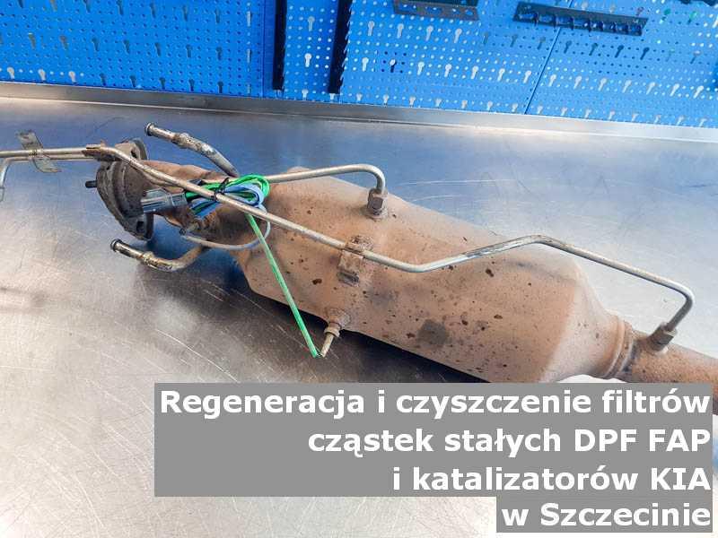 Oczyszczony filtr cząstek stałych GPF marki Kia, na stole w pracowni regeneracji, w Szczecinie.
