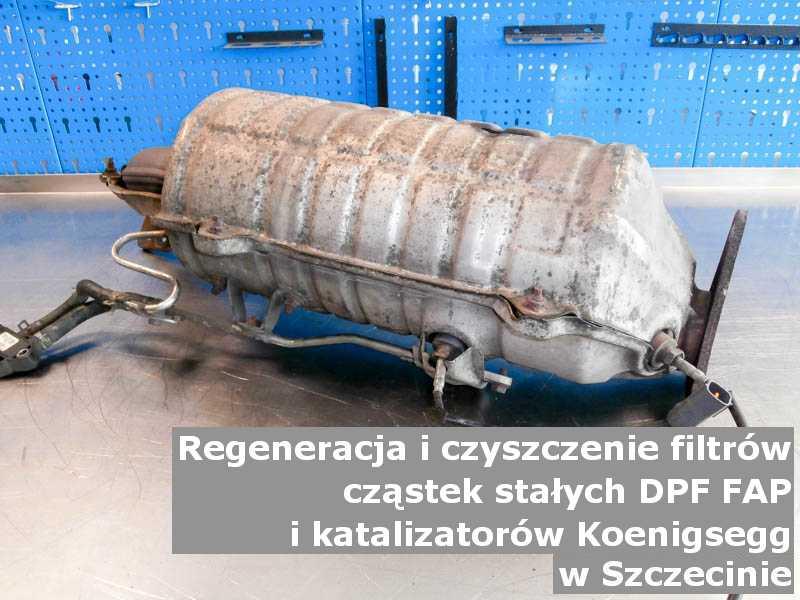 Czyszczony katalizator SCR marki Koenigsegg, w laboratorium, w Szczecinie.