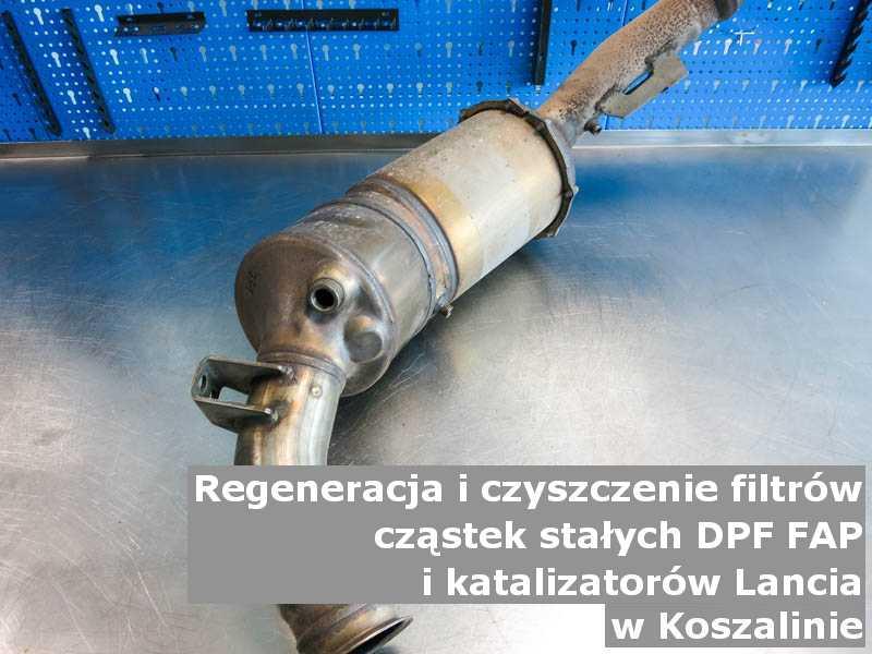 Umyty filtr cząstek stałych DPF marki Lancia, w pracowni regeneracji na stole, w Koszalinie.