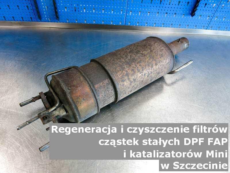 Wypłukany filtr FAP marki Mini, w pracowni laboratoryjnej, w Szczecinie.