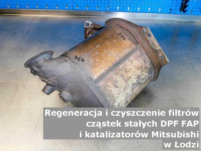 Płukany filtr cząstek stałych marki Mitsubishi, w laboratorium, w Łodzi.