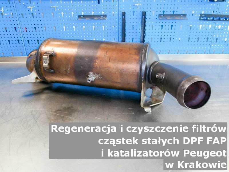 Umyty filtr cząstek stałych DPF marki Peugeot, w warsztacie, w Krakowie.