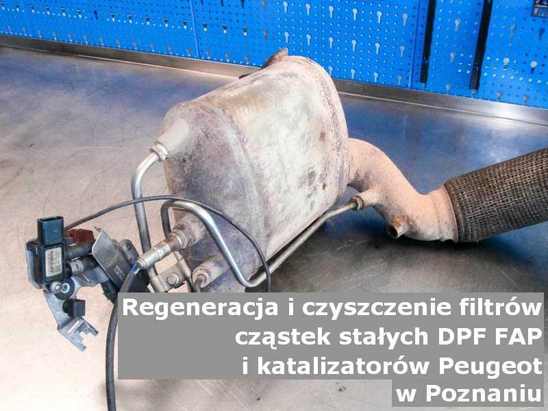 Czyszczony katalizator SCR marki Peugeot, w pracowni, w Poznaniu.