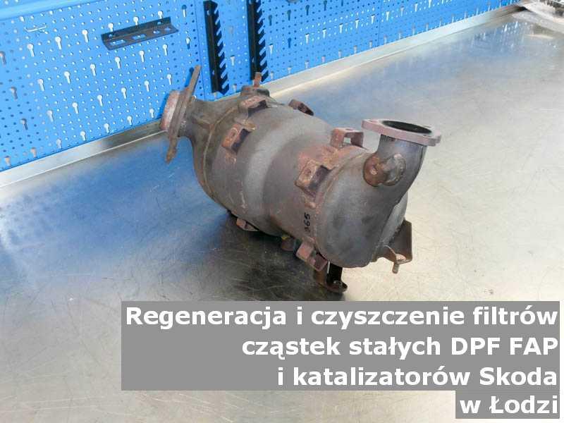 Myty filtr cząstek stałych DPF/FAP marki Skoda, w laboratorium, w Łodzi.