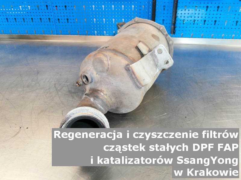 Oczyszczony filtr cząstek stałych marki SsangYong, w laboratorium, w Krakowie.
